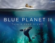 Amazon offers Blue Planet II Episode One for free. (iTunes and Vudu also have it for free.) That's the lowest price we could find by $2