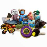 Dog Toys 5-Pack. It's $40 under list price.