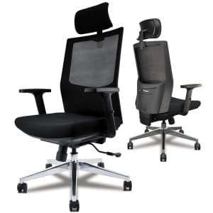 Diouseas Ergonomic Desk Chair for $147