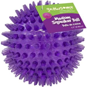 """Gnawsome 3.5"""" Squeaker Ball Dog Toy for $3"""