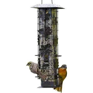 Perky-Pet Squirrel-Be-Gone Wild Bird Feeder for $22