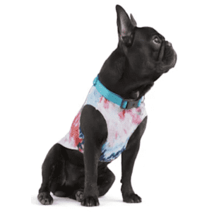 Youly Summer Apparel at Petco: 25% off w/ in-store pickup