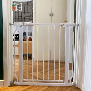 BalanceFrom Easy Walk-Thru Safety Gate for $20