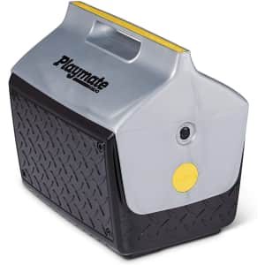 Igloo The Boss Playmate 14-Qt. Cooler for $23