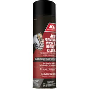 Ace Hardware 17.5-Oz. Aerosol Wasp and Hornet Killer for $3