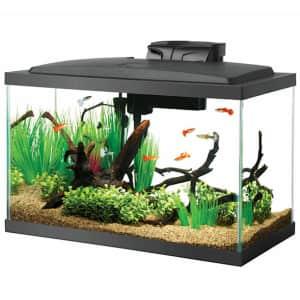 Aquarium Tanks at Petco: 50% off