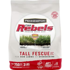 Pennington The Rebels 3-lbs.Tall Fescue Grass Seed Blend for $8