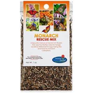 Beauty Beyond Belief Monarch Rescue Mix Wildflower Seeds for $8