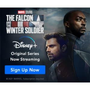 Disney+ 1-Year Subscription: $80