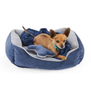 Dog Beds and Throws at Petco: Up to 50% off