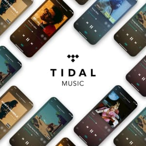 Tidal HiFi Family Music 3-Month Subscription: $1