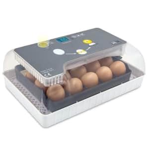 Jumbl Fully Automatic Digital Egg Incubator for $70