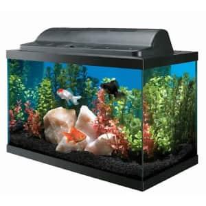 Aqueon Aquarium 10-Gallon Kit for $38