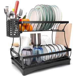 Anglink 2-Tier Dish Drying Rack for $19