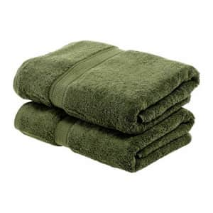 SUPERIOR Solid Egyptian Cotton 2-Piece Bath Towel Set for $38