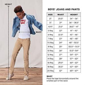 Levi's Boys' Big Westwood Cargo Shorts, Pompeian Red, 14 for $24