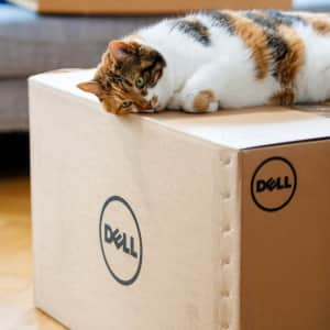 17 Things to Buy During a Dell Back to School Sale
