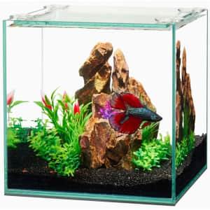 Aqueon Frameless 14-Gallon Cube Aquarium for $42