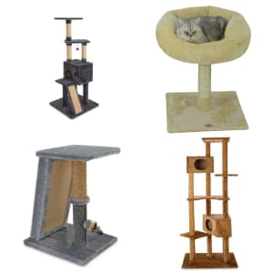 Cat Trees and Towers at Petco: Up to 70% off