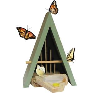 Wildlife World Butterfly Biome Habitat and Feeder for $34