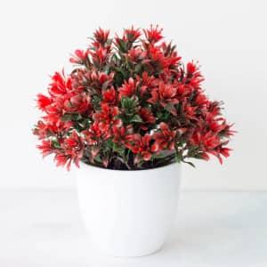 Faux Plants at Wayfair: under $25