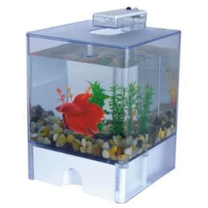 Aqua Box 3-Liter Aquarium w/ LED & Gravel for $14