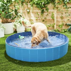 Frisco Outdoor Dog Swimming Pool from $13 in cart