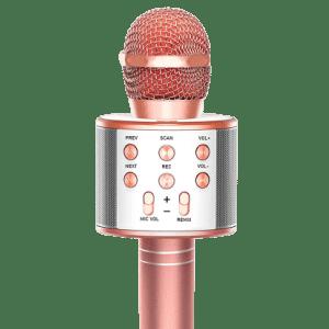 Fukkuda 3-in-1 Karaoke Microphone for $25