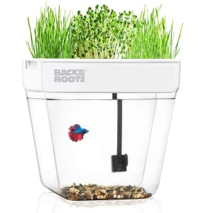 Back to the Roots Deluxe Water Garden for $88