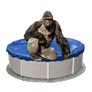 LinerWorld Sturdy Man 18-Foot Above Ground Winter Pool Cover for $35