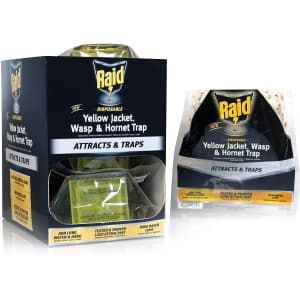 Raid Yellow Jacket and Wasp Trap 6-Pack for $32