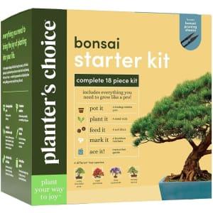 Planters Choice Bonsai Starter Kit for $25