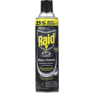 Raid 17.5-oz. Foam Wasp and Hornet Killer for $4 for members