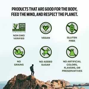 Vega Protein & Energy, Vanilla Bean, Plant Based Coffee Protein Powder - Vegan Protein Powder, for $29