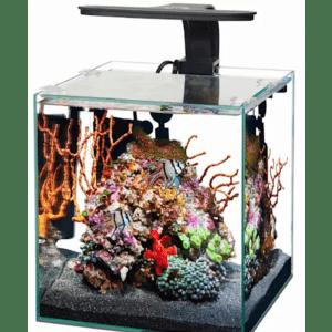 Aqueon Frameless Cube Aquariums at Petco: more than 50% off