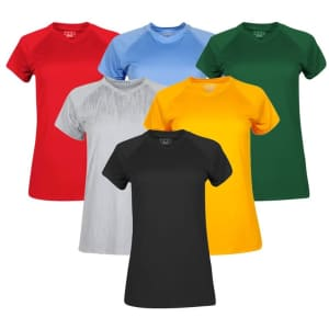 Champion Double Dry Short Sleeve T-Shirt Mystery 3-Pack for $24