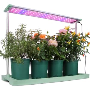 Moistenland 48W LED Grow Light Panel from $54