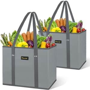 Baleine Reusable Shopping Bag 2-Pack for $13