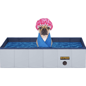 Pools at Chewy: Extra 60% off in cart