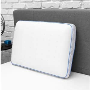 Home Decorators Collection Cooling Gel Memory Foam Jumbo Pillow for $40