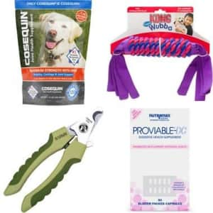 $20 Chewy eGift Card: free w/ $50 Purchase of Select Dog Items