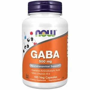 Now Foods Now Supplements, GABA (Gamma-Aminobutyric Acid)500 mg + B-6, 100 Count, Veg Capsules for $13
