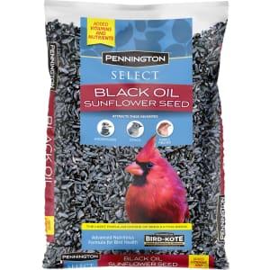 Pennington Select Black Oil Sunflower Seed 10-Lb. Bag for $9