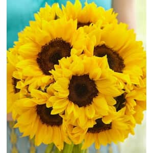 Sunflowers at 1-800-Flowers: Up to 25% off
