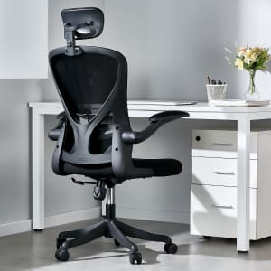 Omusa-Pdi Rolling Desk Chair w/ Lumbar Support for $119