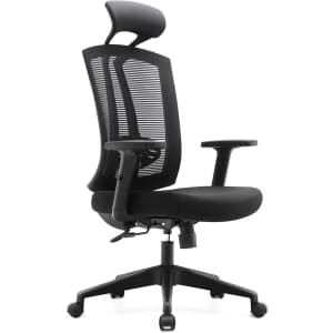 Rongbuk Mesh Office Chair for $170