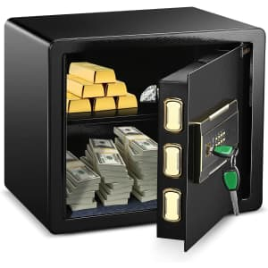 Adimo 1.23-Cubic Foot Safe for $170