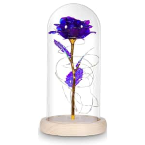 Vilux Enchanted Rose for $18