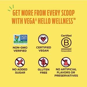 Vega Hello Wellness Spring in Your Step Blender Free Smoothie 14 Servings oz Plant Based Vegan for $23