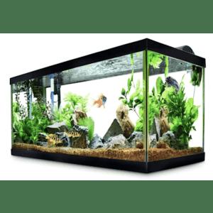 Aquariums at Petco: 50% off